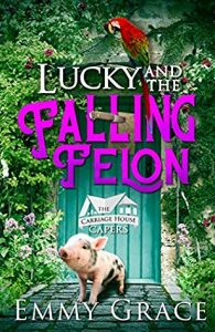 Review: Lucky and the Falling Felon by Emmy Grace